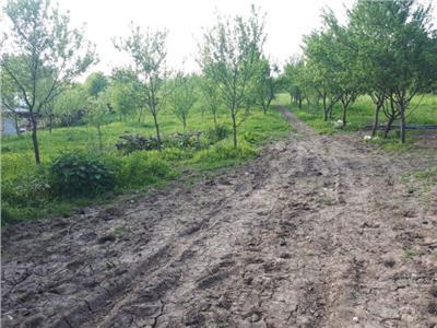 Pret bun ! Vanzare teren intravilan in Valea Voievozilor - Rezidential